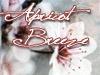 Apricot Breeze